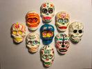 <p>3D printed skulls</p>